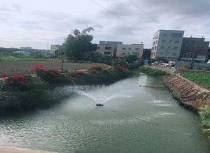 翔安区溪尾中桥沟流域水质提升工程
